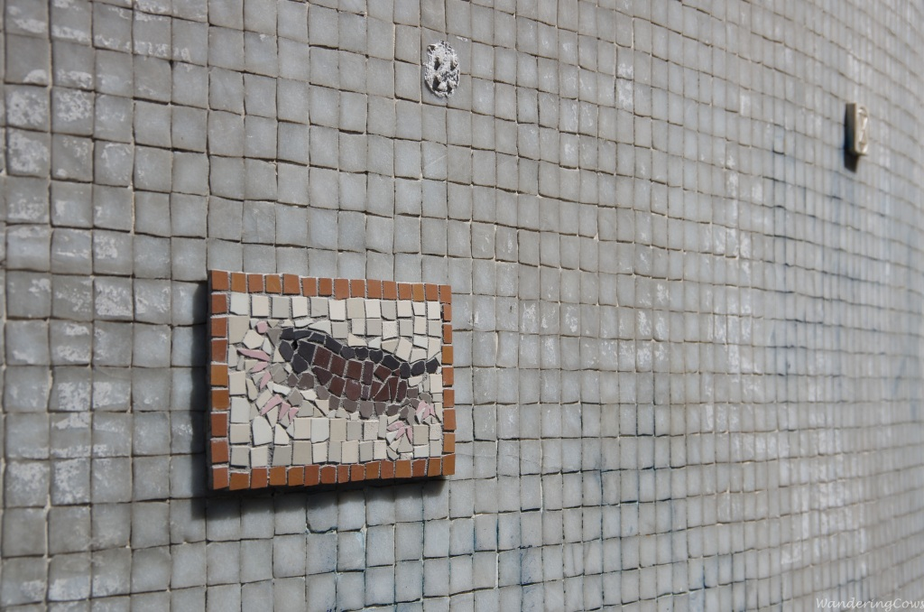 Crab mosaic